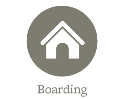 Boarding for your pets in Bradenton
