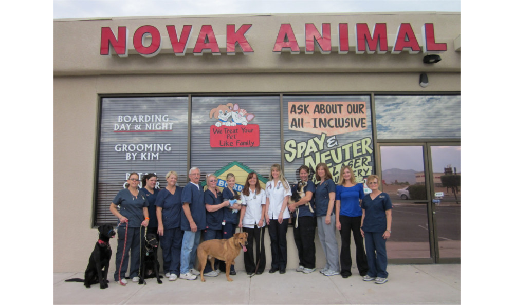 Exterior at Lake Havasu City Animal Hospital