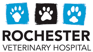 Rochester Veterinary Hospital
