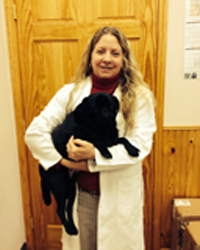 Animal Hospital Veterinarian in Stone Ridge