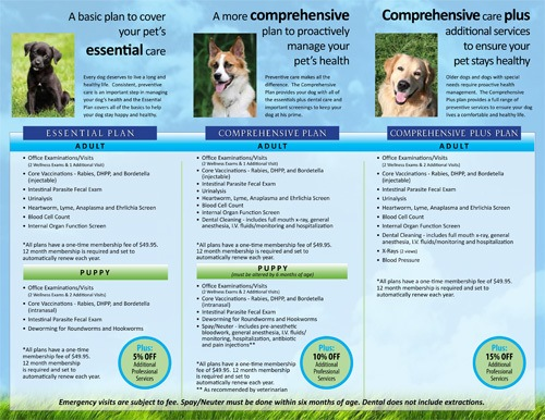 Dog Wellness Plans at Stafford Veterinary Hospital