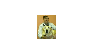 Dr. Szabo of Hidden Valley Animal Hospital & Boarding
