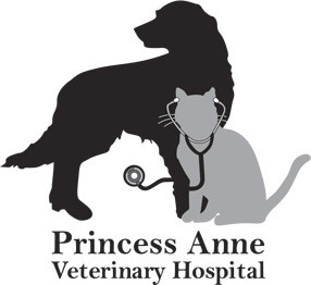 Princess Anne Veterinary Hospital