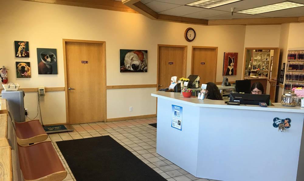 Holladay Veterinary Hospital Lobby Area In Salt Lake City