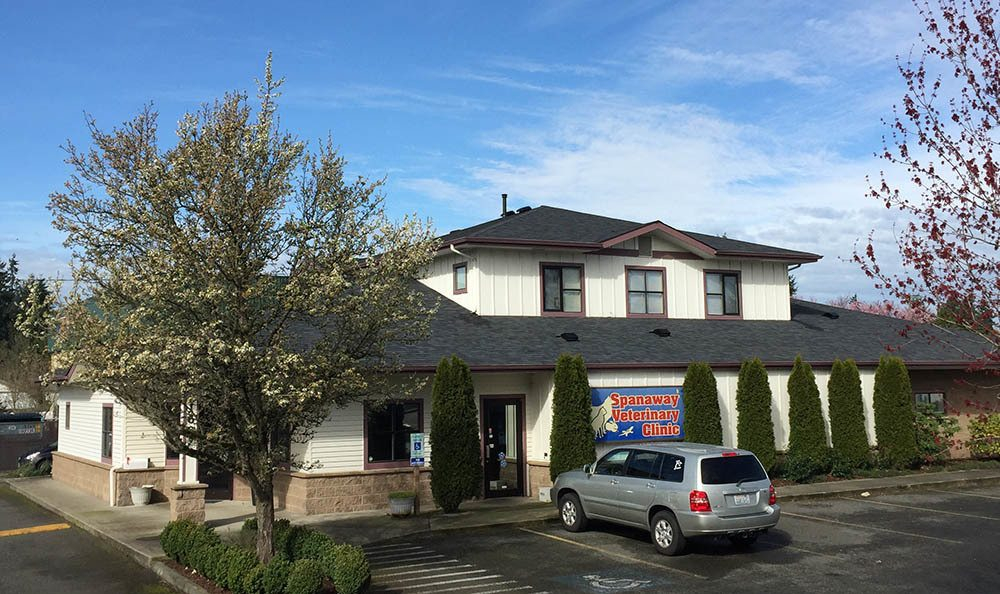 Welcome to Spanaway Veterinary Clinic