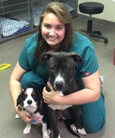 Nicole, Veterinary Assistant at Virginia Beach Animal Hospital