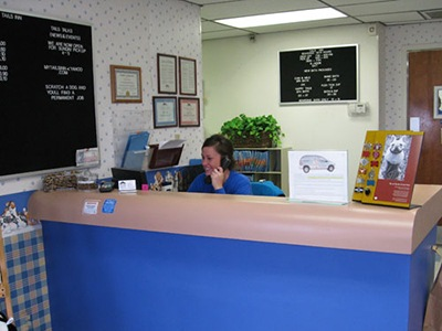 Friendly Receptionist at Animal Medical Center of Amarillo in Amarillo