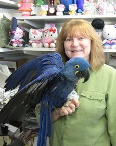 Pamela Snoble Donushi, Hospital Manager at Bradenton Animal Hospital