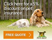 Pets Best in Scottsdale, AZ