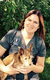 Team member Julie at All City Pet Care Veterinary Emergency Hospital