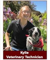 Kylie, Veterinary Technician at Pocatello Animal Hospital