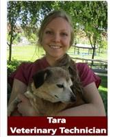 Tara, Veterinary Technician at Pocatello Animal Hospital