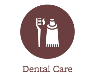 Pet dental care offered in Port Orchard