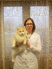 Dr. St. John at Sandwich Veterinary Hospital