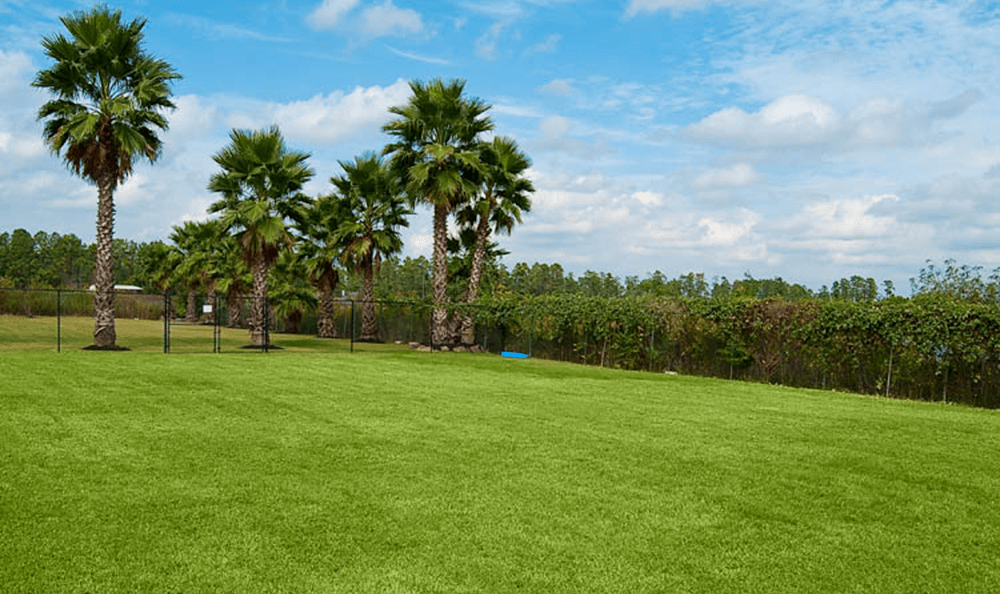 Outdoor Play Area In Cypress