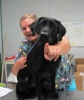 Rebekka Weise at Kruger Animal Hospital