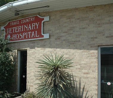 About our Austin Animal Hospital