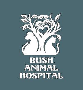 Bush Animal Hospital
