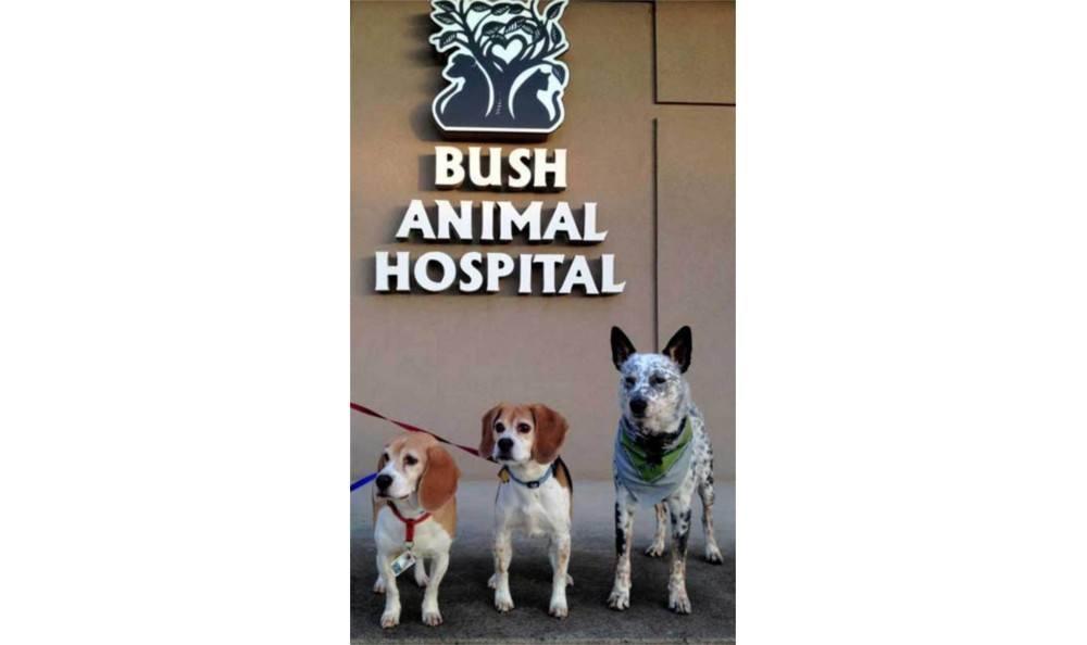 Happy customers at Bush Animal Hospital