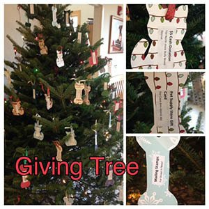 The giving tree at {{location_name}}