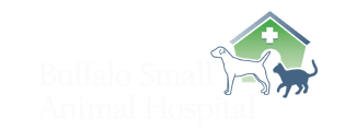 Buffalo Small Animal Hospital