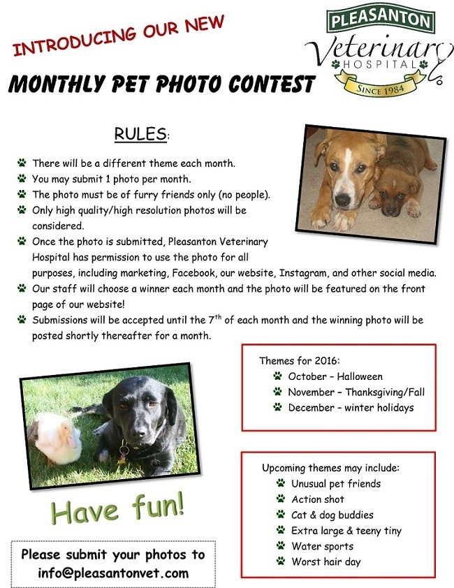 Monthly photo contest at {{location_name}}