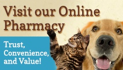 Online Pharmacy at Pleasanton Veterinary Hospital