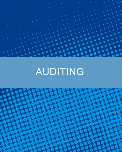 Auditing assistance at JSM Storage Management