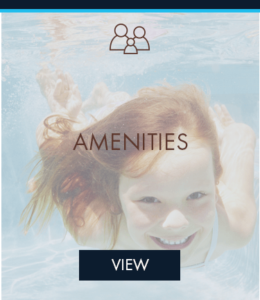 The Vista amenities