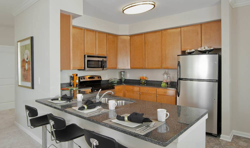 Stainless appliances in your new kitchen at The Morgan in Chesapeake, VA