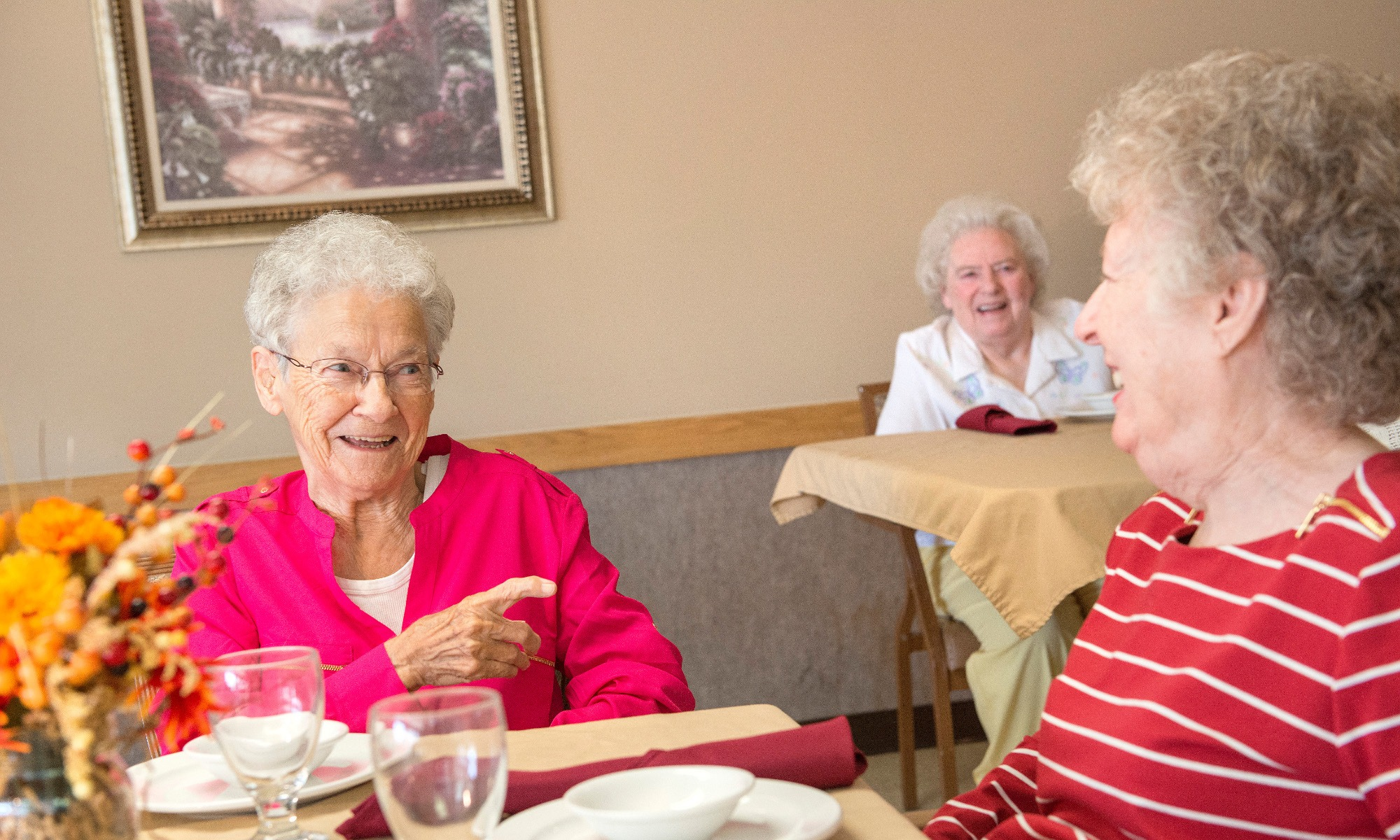 Skilled Nursing in Ossian IN