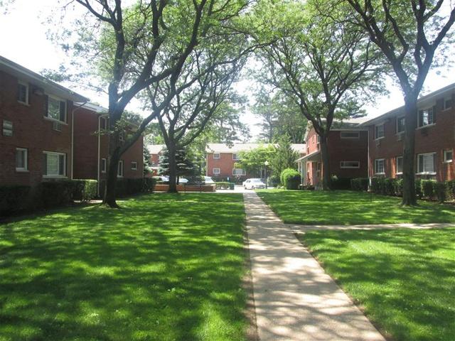 Tree covered walkway at Eagle Rock Apartments at Mineola.