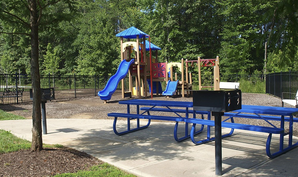 Playground At Townhomes In Chester Virginia