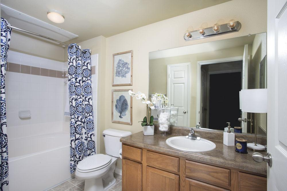 Upscale Country Club Pointe Master Bathroom