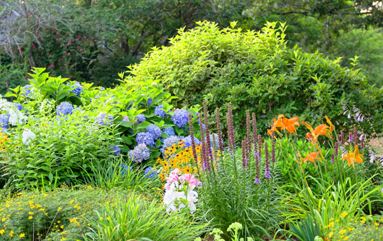 garden at our senior living facility in west yarmouth