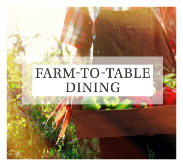 Visit our dining page for more information about our fresh farm-to-table meals served at Maplewood at Orange