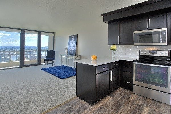 Luxury Living at Harrison Tower