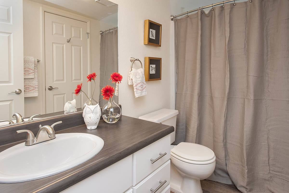 Luxury 1 & 2 Bedroom Apartments In Sacramento, Ca. Las Vegas Decorations. Seafoam Green Decorative Pillows. Dining Room Storage Furniture. Cheap Rooms In Reno. Beach House Decor On A Budget. Decorative Stair Treads. Decorative Ceramic Wall Tile. San Diego Hotel Rooms