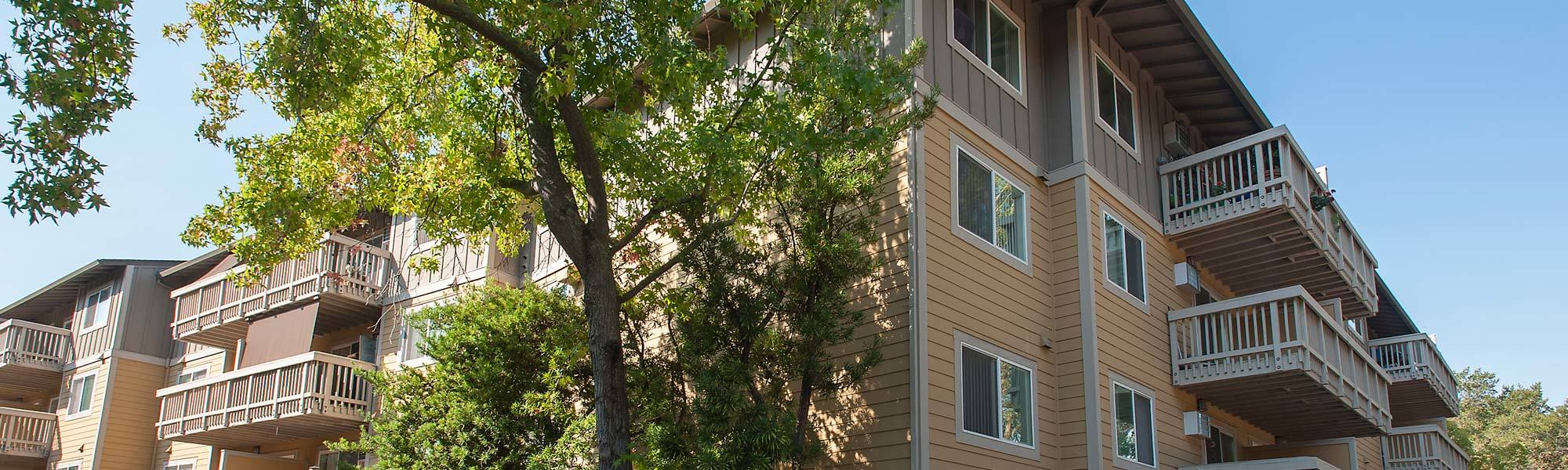Learn about our exciting programs at Regency Plaza Apartment Homes on our website