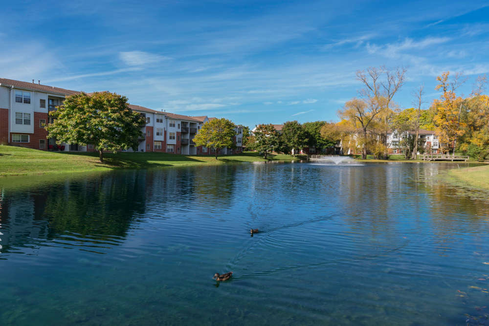 Lake at Ponds at Georgetown Apartments in Ann Arbor, MI