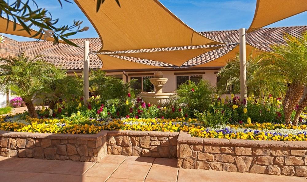 Flowers At Senior Living In Mesa Arizona