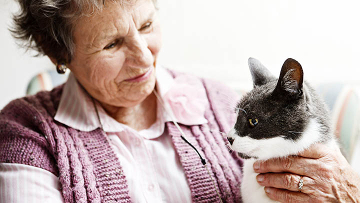 For a lot of seniors, their pet is their sole companion.