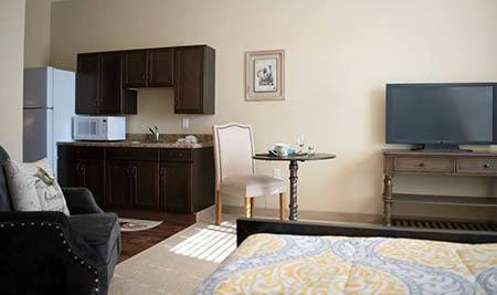 Living area and kitchen at Joshua Springs Senior Living