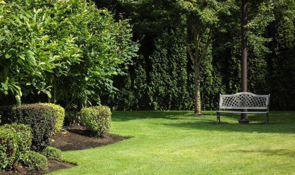 Landscaping at Westbury Commons