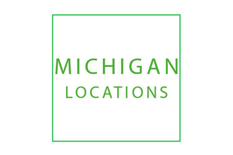 Mini Storage Depot Michigan locations