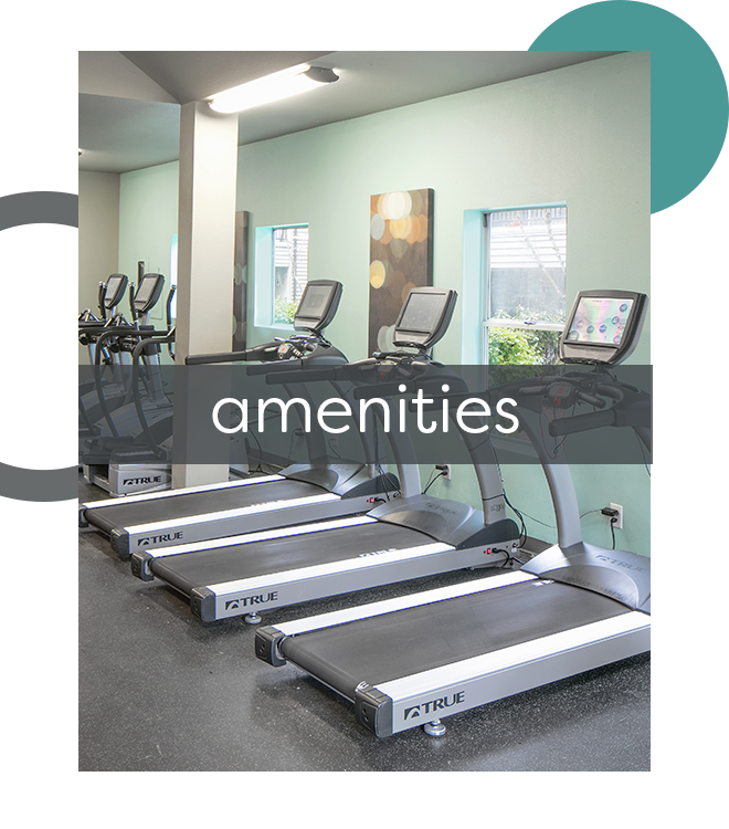 The Terraces Apartments Offers A Variety Of Luxurious Amenities!