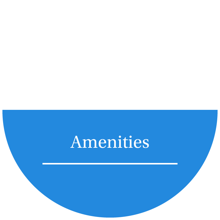 Amenities at The Village Apartments