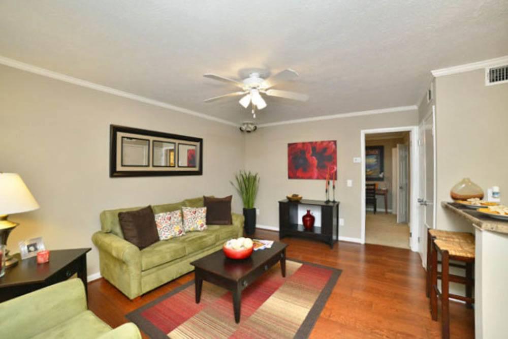 1 Bedroom Apartments Auburn Al Absolutionthe Com