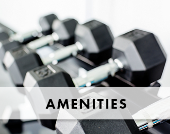 Features and amenities at Chapel Oaks Apartments
