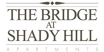 The Bridge at Shady Hill